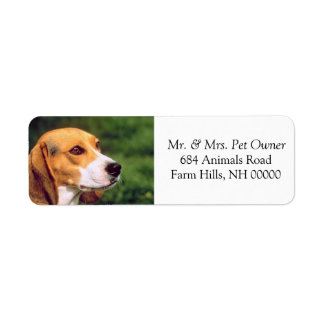 Beagle Dog Face Return Address Mailing Stickers