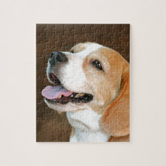 Beagle Dog Jigsaw Puzzle