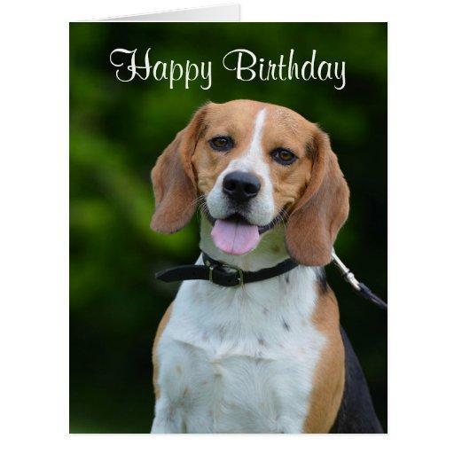 Beagle dog lovers cute custom birthday card – Happy Birthday Cards with Dogs