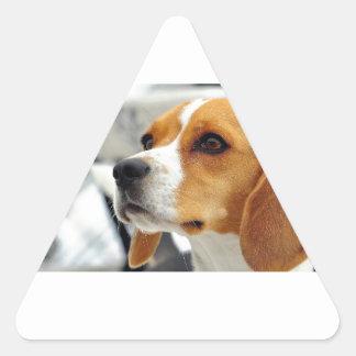 Beagle Dog Triangle Sticker