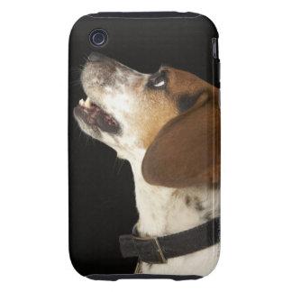 Beagle dog with black collar profile iPhone 3 tough cases