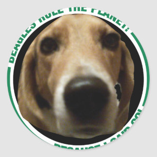 Beagle Dogs rule the Planet - because I said so! Round Stickers