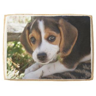 Beagle Dogs Shortbread Cookie