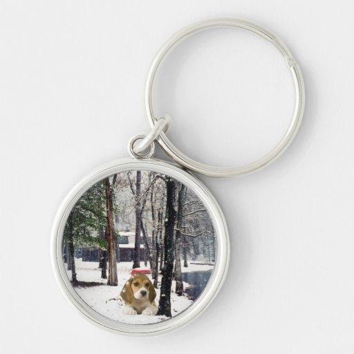 Beagle en el llavero de la nieve