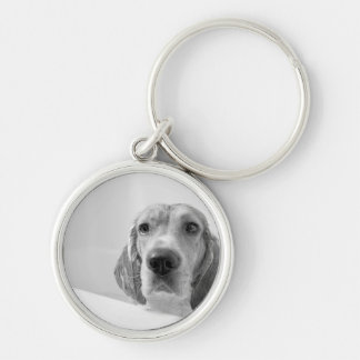 Beagle en la bañera llavero redondo plateado