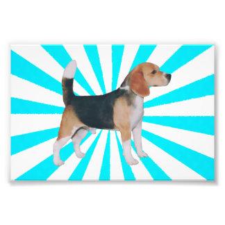 Beagle en molinillo de viento de la turquesa cojinete