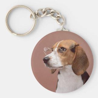 Beagle erudito llaveros personalizados