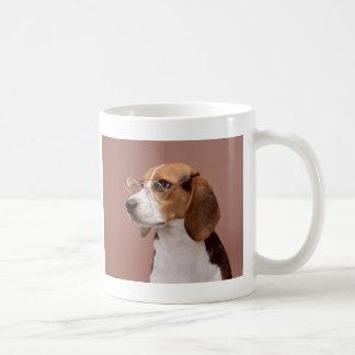 Beagle erudito taza