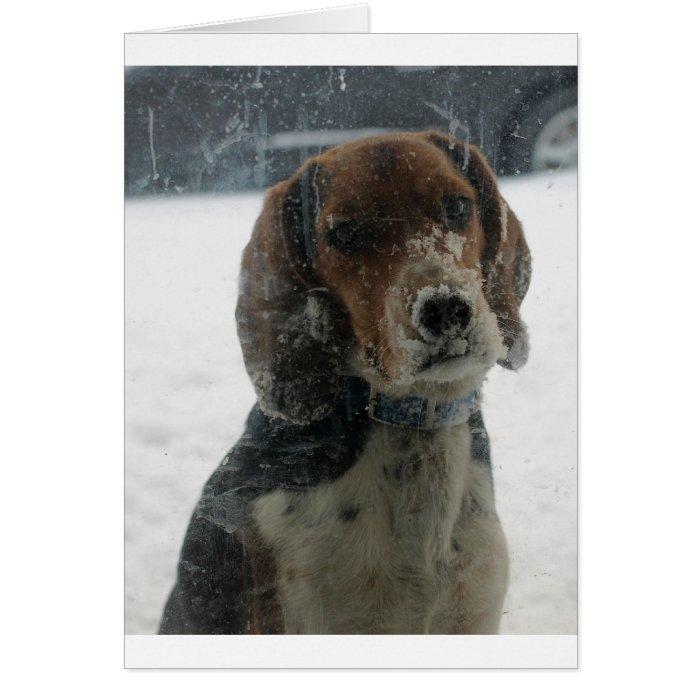 Beagle Face at the Window Card