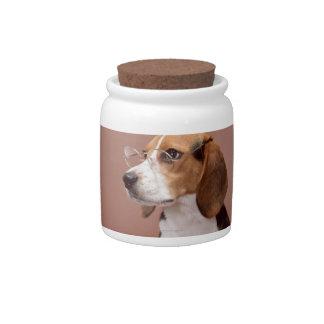 Beagle Jarras Para Caramelos