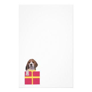 Beagle Gift Box Stationery