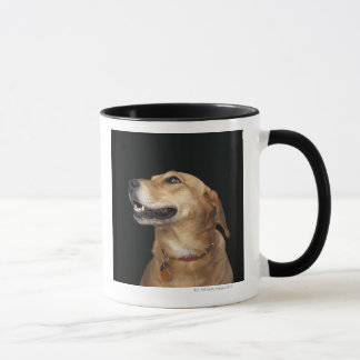 Beagle Golden Lab Mix looking to the side Mug