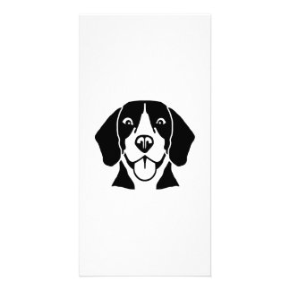 Beagle head face photo card