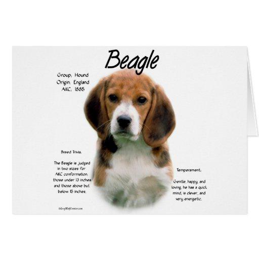 Beagle History Design Greeting Card