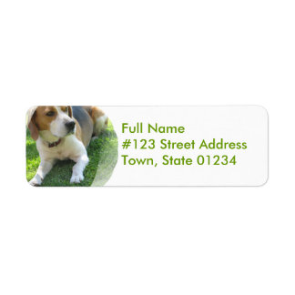 Beagle Hound Dog Return Address Label