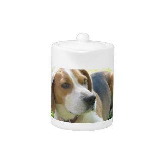 Beagle Hound Dog Teapot