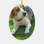 Beagle Hound Ornament
