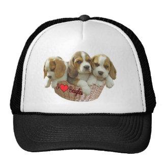 Beagle Hound Pups, I Love Beagles Trucker Hat