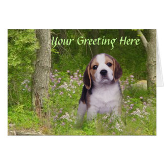 Beagle In Forest Adorable Greeting Card