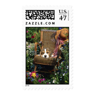 Beagle In Garden Chair Postage