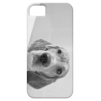 Beagle in the Bathtub iPhone 5 Cases