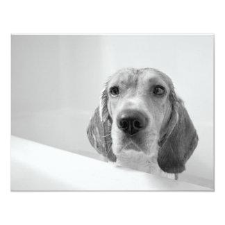 Beagle in the Bathtub 4.25x5.5 Paper Invitation Card