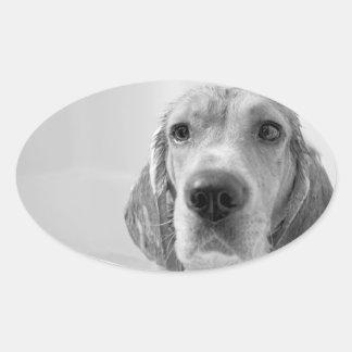 Beagle in the Bathtub Oval Sticker