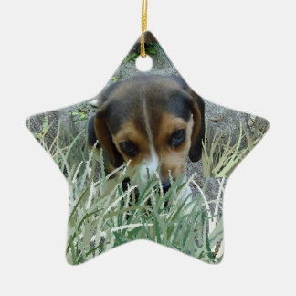 Beagle in the grass ceramic ornament