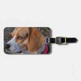 Beagle In the Morning Bag Tag