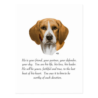 Beagle Keepsake MALE Postcard
