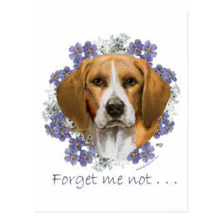 Beagle Keepsake Postcard