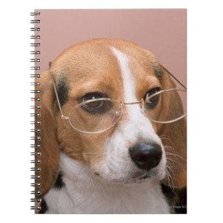 Beagle Cuadernos