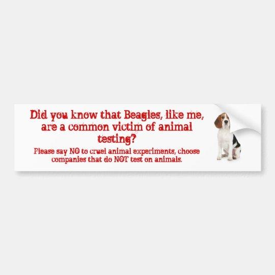 Beagle Like me/animal testing Bumper Sticker