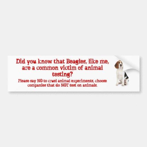 Beagle Like me/animal testing Bumper Stickers