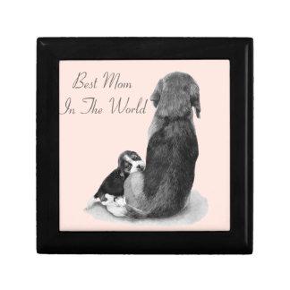 Beagle lindo del perrito con arte del realista del caja de joyas