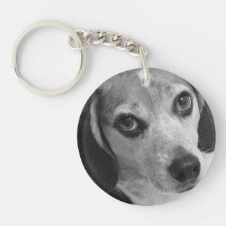 beagle llavero redondo acrílico a una cara