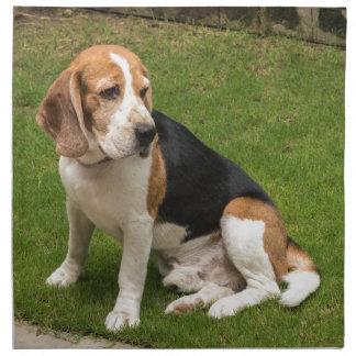 Beagle Napkin
