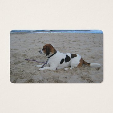 Beach Themed Beagle on beach.png business card