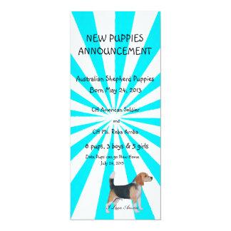 Beagle on Turquoise Pinwheel Card
