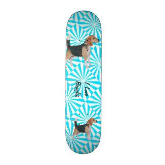 Beagle on Turquoise Pinwheel Skateboards