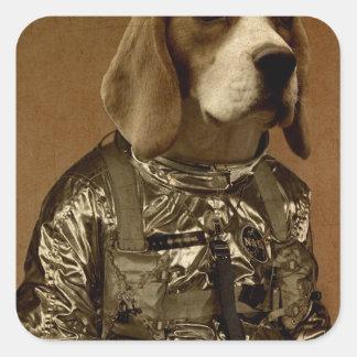 Beagle Pegatina Cuadrada