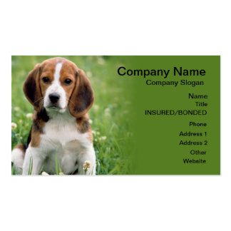 Beagle Pet Sitting Business Card