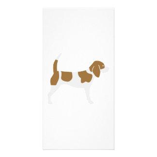 Beagle Photo Card