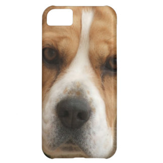 Beagle Pictures Cover For iPhone 5C