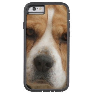 Beagle Pictures iPhone 6 Case
