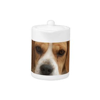 Beagle Pictures Teapot