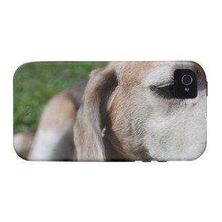 beagle portrait iPhone 4 covers