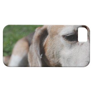 beagle portrait iPhone 5 case