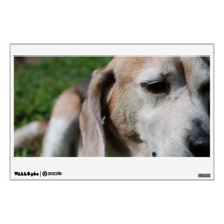 beagle portrait wall decal