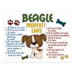 Beagle Property Laws 4 Post Cards